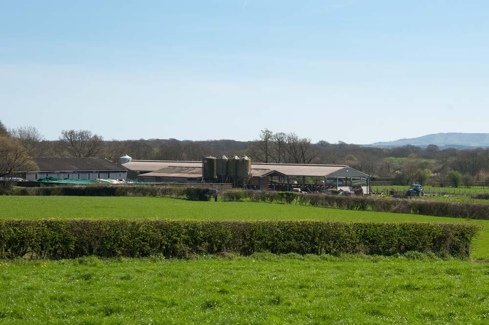 Farmland Sale, Purchase & Valuation