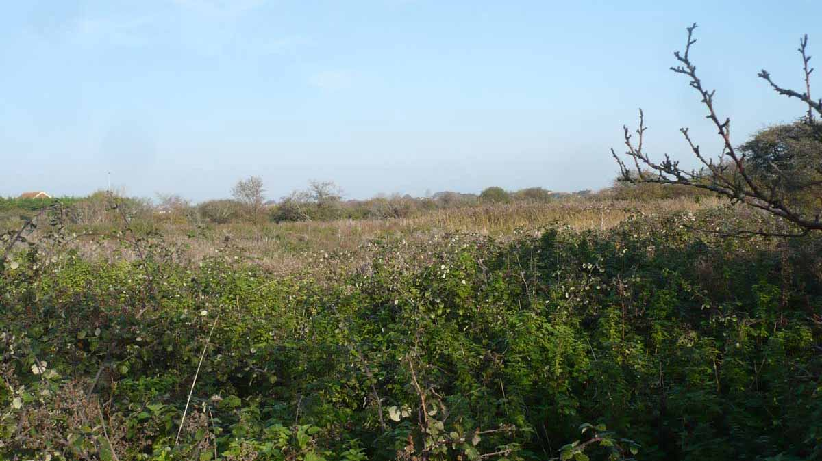 Eastbourne, East Sussex - 1.2 Acres